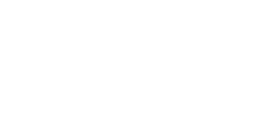 CDK Consulting Web White